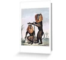 Lion Tailed Monkey Drawing Greeting Card
