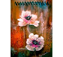 The Poppy Journals...Pink Photographic Print
