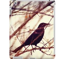 Black Bird iPad Case/Skin