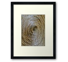 Find The Needle II Framed Print