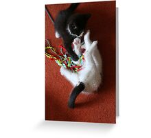 Playfighting Kittens Greeting Card