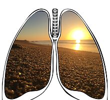 Lungs - San Jose Beach by riskeybr
