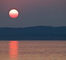 Great Ball of Fire by Barb White