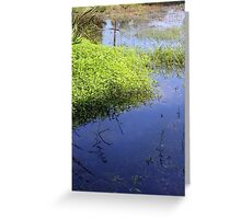 Reflections in Cahokia Greeting Card