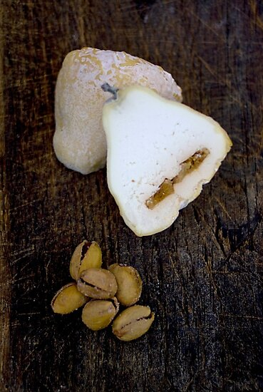 Cheese and Pistachios by chezus