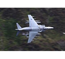 Low flying Harrier cad west Photographic Print