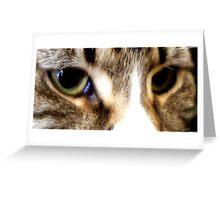brand new eyes. Greeting Card