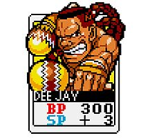 DeeJay - Street Fighter Photographic Print