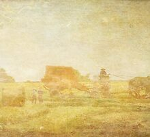 Bringing in the Harvest by Sarah Vernon