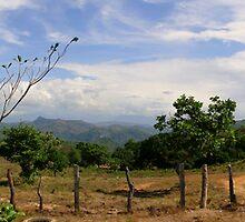 Panamanian Panorama by Al Bourassa