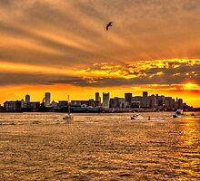 Golden Rays, Boston, MA by LudaNayvelt