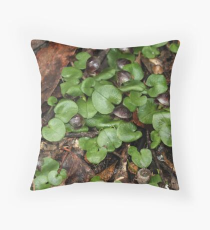 Veined Helmet Orchid Group Throw Pillow