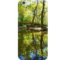 Colors of Life iPhone Case/Skin