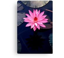 Just One - pink waterlilly Canvas Print