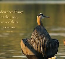 Great Blue Heron Reflecting (with quote) by THurdCreations