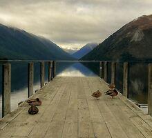 Lake Rotoiti Jetty by ChrisNZ