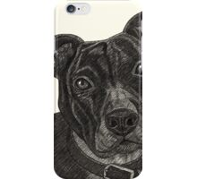 Staffordshire Bull Terrier Pen Drawing iPhone Case/Skin