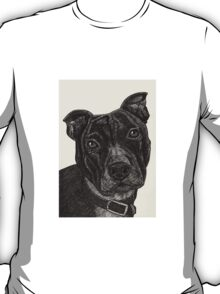 Staffordshire Bull Terrier Pen Drawing T-Shirt