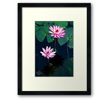 Two of a kind - pink waterlillies Framed Print