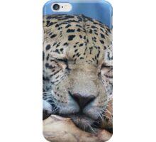 Sleeping Jaguar iPhone Case/Skin