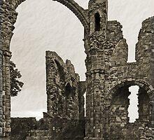 Holy Island Priory  by Nigel Bangert