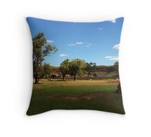 Rural scene along the Victoria Highway Throw Pillow