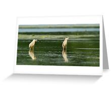 Two Amigos Greeting Card