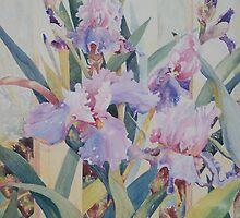 Mauve Iris by scallyart
