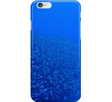Fish and a Sunken Ship iPhone Case/Skin