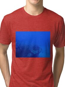 Fish and a Sunken Ship Tri-blend T-Shirt