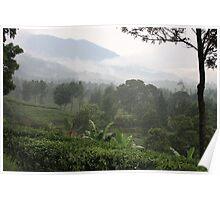 Gunung Mas Tea Gardens Poster