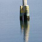Bird on a pole... by wilsonsz