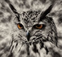 Two Eyes by pther
