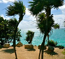 Breezy Palms by Valerie Rosen