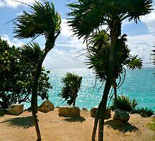 Breezy Palms by Valerie Rosen