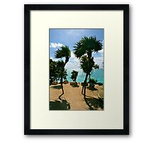 Breezy Palms Framed Print