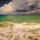 Storm Over the Gulf  by John  Kapusta