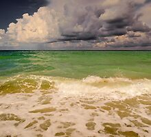Storm Over the Gulf  by John  Kapusta