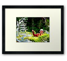 Panamanian Hedge Trimmer Framed Print