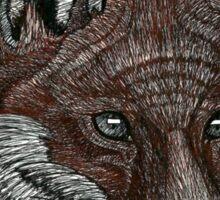 Red Fox Pen Drawing Sticker