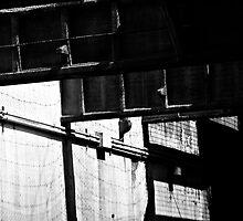 shadow world by kasparh