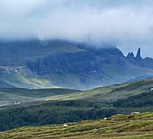 Old Man of Storr from Penifiler Skye by Panalot