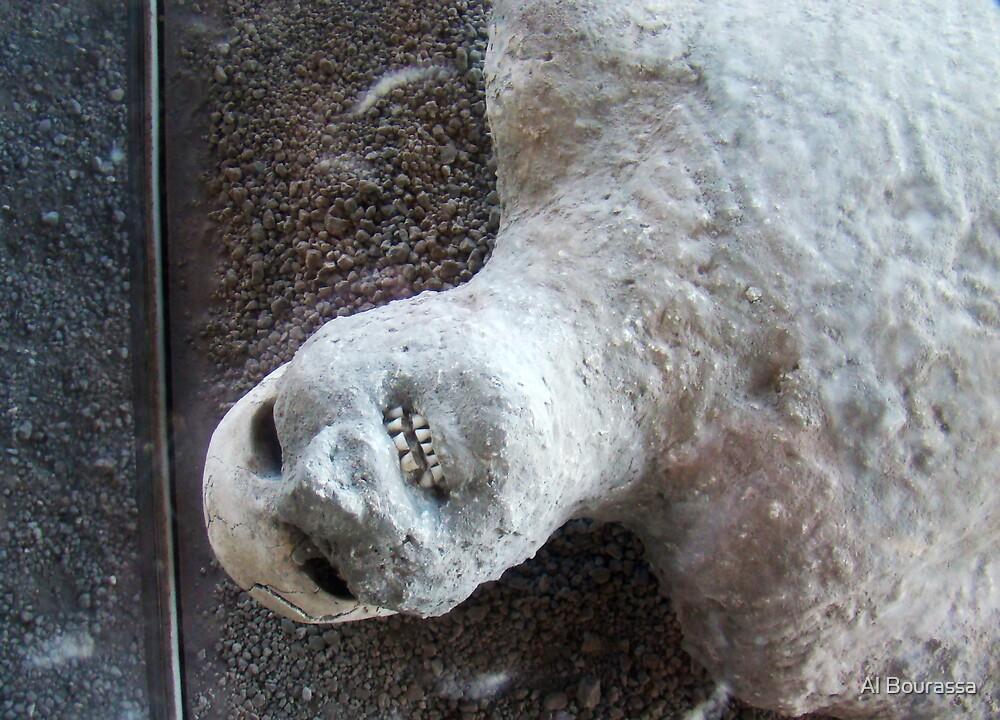 Death Throes II, Pompeii 79AD by Al Bourassa