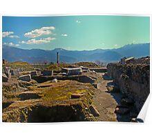Pompeii Excavations Poster