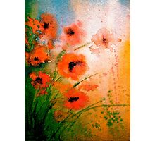 The Poppy Journals...Impressions Photographic Print