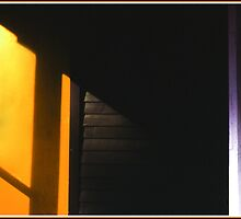 The Orange Door by Wayne King