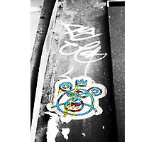 Beary Blue Photographic Print