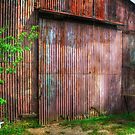 Rats Castle Farm Barn Door by Nigel Bangert