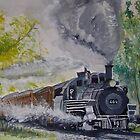 464 Rio Grande by Carole Robins