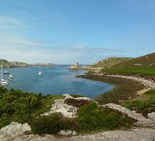 Cromwell's Castle, Tresco, Isles of Scilly by Jenny Taylor